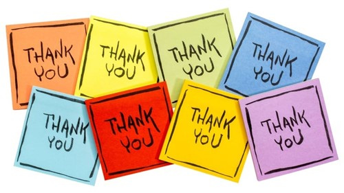 thank you note cards graphic