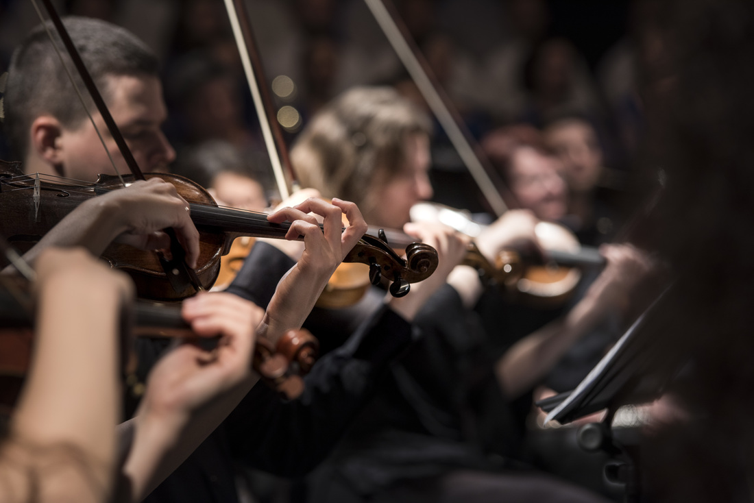 a closeup shot of orchestra playing